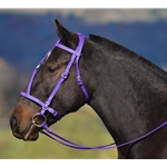 purple MEDIEVAL BAROQUE WAR or PARADE BRIDLE made from BETA BIOTHANE (Solid Colored)
