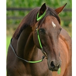 limegreen WESTERN BRIDLE (One or Two Ear Split Ear Browband) made with REFLECTIVE DAY GLO Biothane