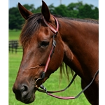 wine WESTERN BRIDLE (One or Two Ear Split Ear Browband) made with REFLECTIVE DAY GLO Biothane