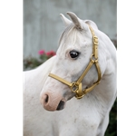 betabiothanecolors Turnout HALTER & LEAD made from BETA BIOTHANE (Solid Colored)