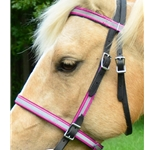 hot pinkdayglooverlay ENGLISH CONVERT-A-BRIDLE with REFLECTIVE DAY GLO Biothane