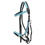 hot pinkdayglooverlay  Traditional HALTER BRIDLE made with REFLECTIVE DAY GLO Biothane