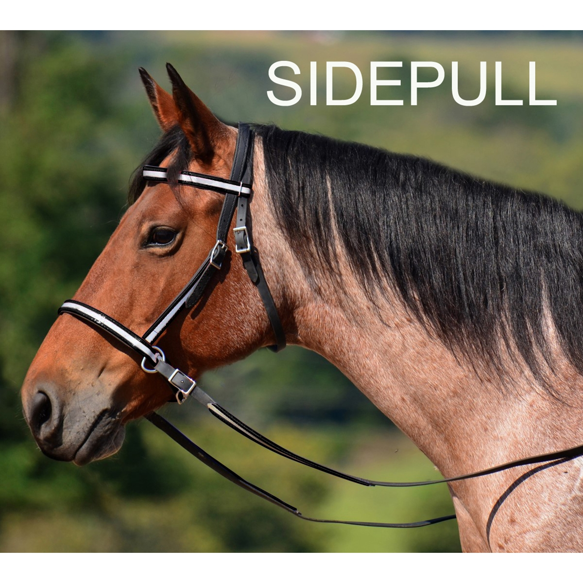 Two Horse Tack 2 In 1 Bitless Bridle Made With