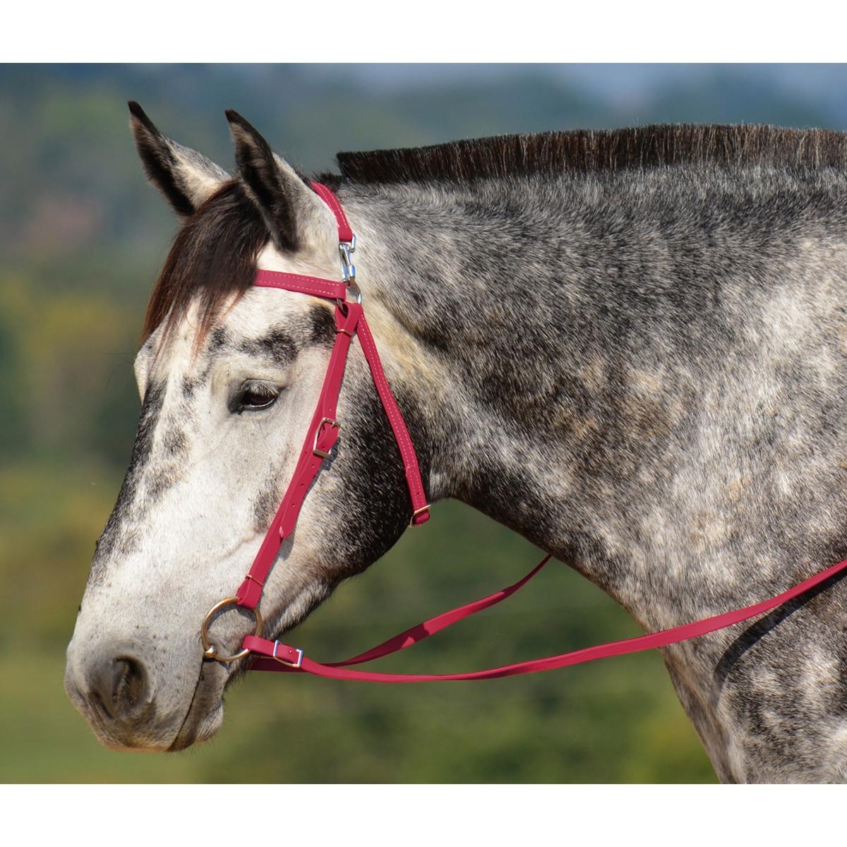 Mule Headstalls