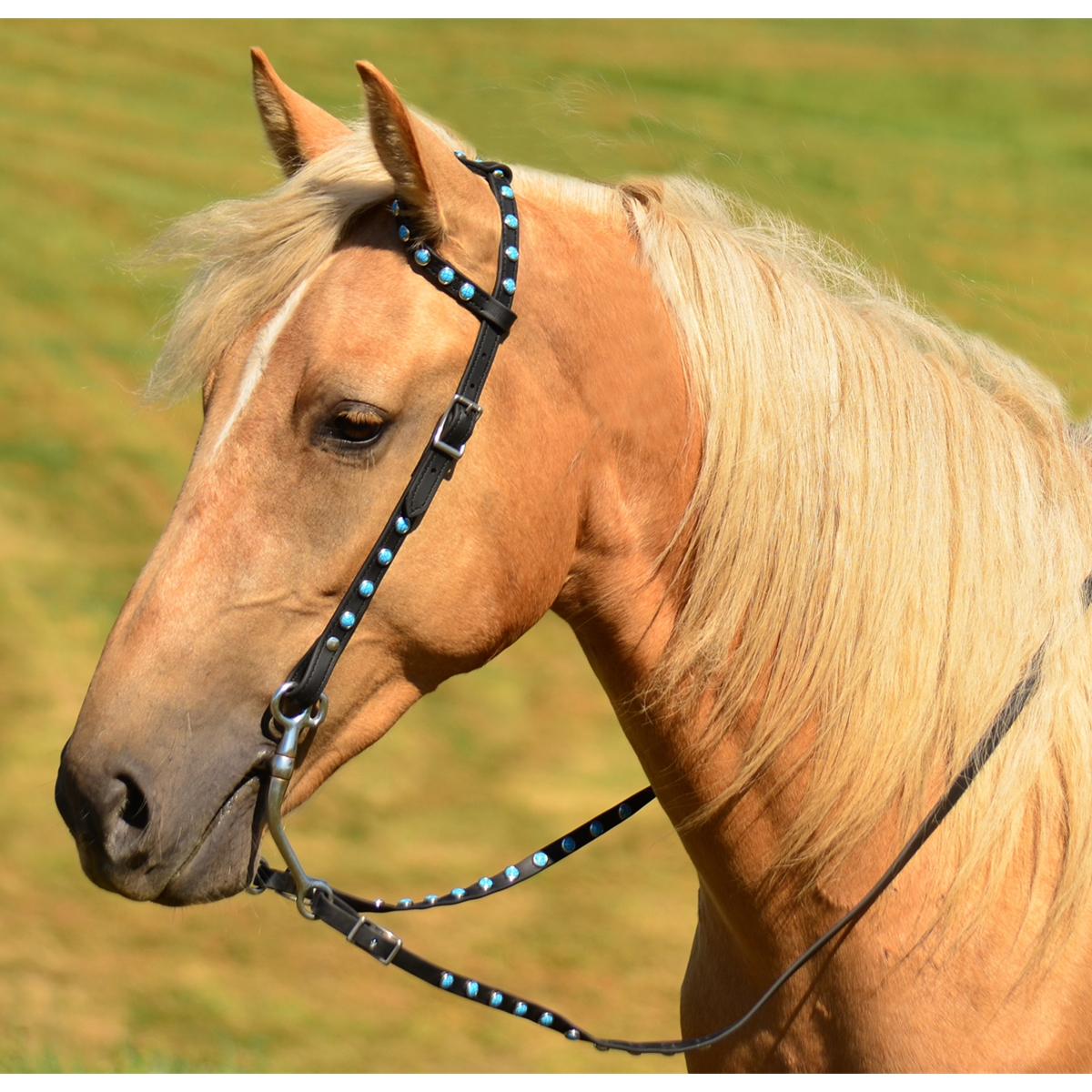 Western Bridle One Or Two Ear Split Browband Made From