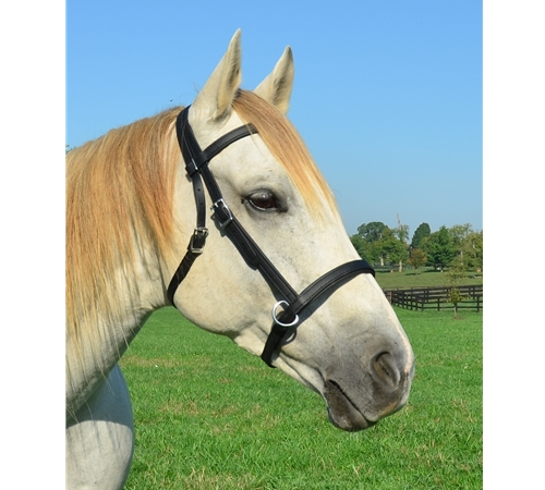 how to make a bitless bridle