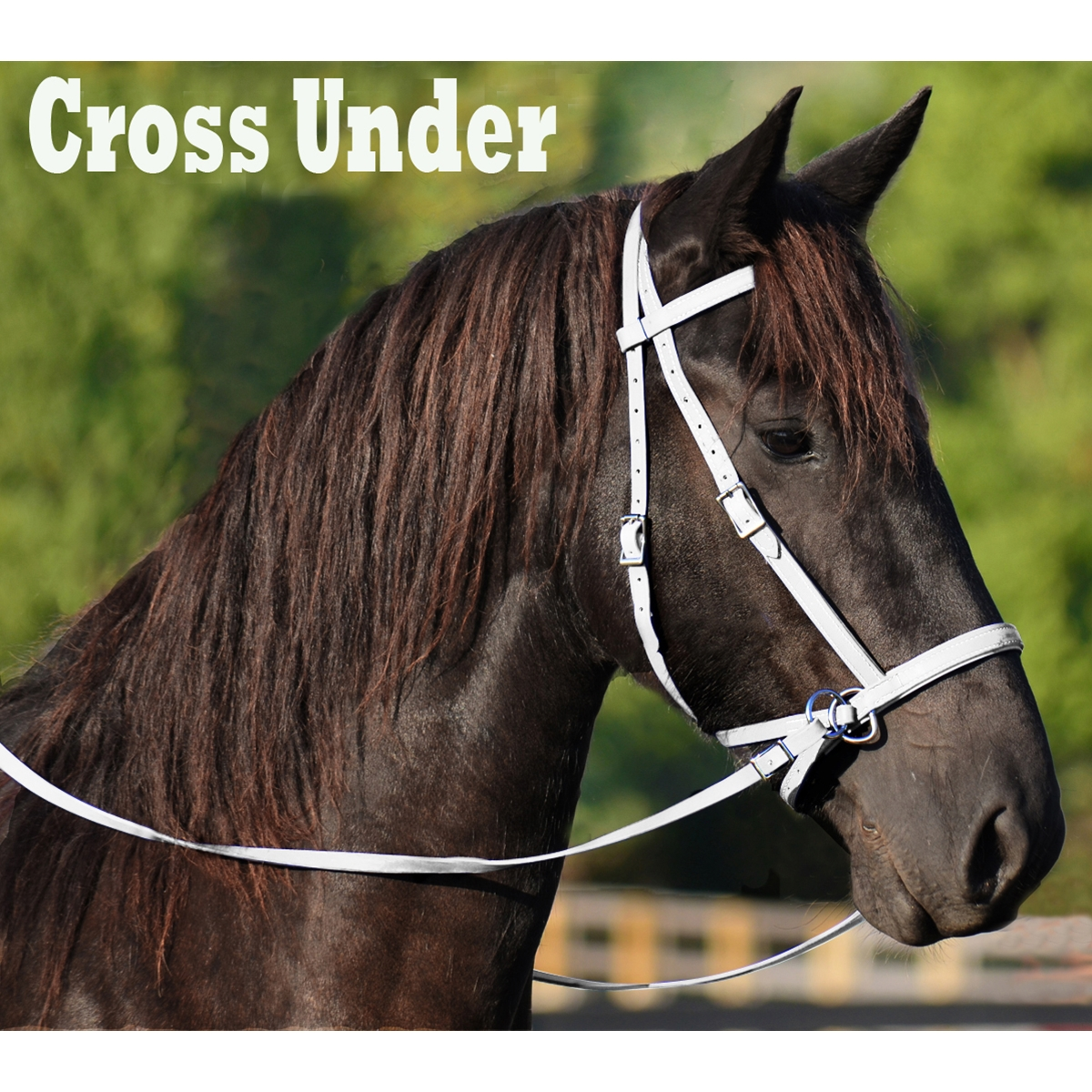 WHITE 2 in 1 BITLESS BRIDLE made from BETA BIOTHANE