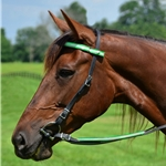 Snap On Browband WESTERN BRIDLE made with REFLECTIVE DAY GLO Biothane