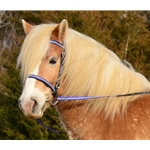 PICNIC BRIDLE or SIMPLE HALTER BRIDLE made with REFLECTIVE DAY GLO Biothane