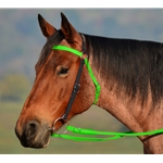 AUSTRALIAN BARCOO OUTRIDER AUSSIE BRIDLE made from BETA BIOTHANE **Green Bean Official Tack***