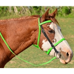 ENGLISH CONVERT-A-BRIDLE made from BETA BIOTHANE (Mix N Match) **Green Bean Official Tack***