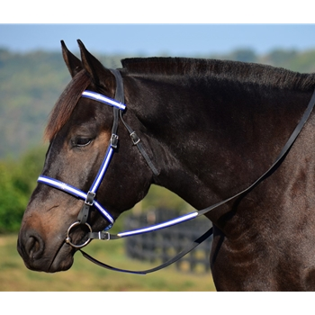 ENGLISH TRAIL BRIDLE with REFLECTIVE DAY GLO Biothane