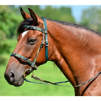 ENGLISH TRAIL BRIDLE with CAMOUFLAGE Biothane