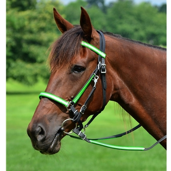 HTraditional HALTER BRIDLE made with REFLECTIVE DAY GLO Biothane