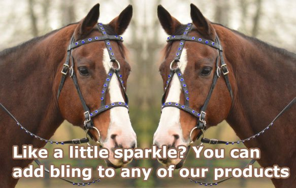 horse wears a sparkling bling tack