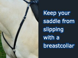 a horse wear a breast collars