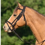 ENGLISH BRIDLE with CAVESSON