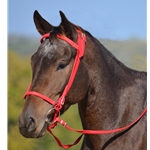 red ICELANDIC BRIDLE made from BETA BIOTHANE (Solid Colored)