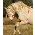 orange (bright/hunters/blaze)overlay ENGLISH CONVERT-A-BRIDLE made from BETA BIOTHANE (ANY 2 COLOR COMBO)
