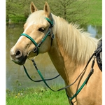 turquoisebase ENGLISH CONVERT-A-BRIDLE made from BETA BIOTHANE (ANY 2 COLOR COMBO)