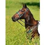 light blue (teal/sky)overlay ENGLISH CONVERT-A-BRIDLE made from BETA BIOTHANE (ANY 2 COLOR COMBO)