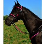 pink (hot/neon)overlay ENGLISH CONVERT-A-BRIDLE made from BETA BIOTHANE (ANY 2 COLOR COMBO)