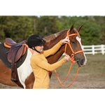 orange Traditional HALTER BRIDLE with BIT HANGERS made from BETA BIOTHANE (Solid Colored)