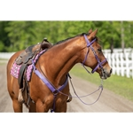 yellow Traditional HALTER BRIDLE with BIT HANGERS made from BETA BIOTHANE (Solid Colored)