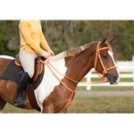 black Traditional HALTER BRIDLE with BIT HANGERS made from BETA BIOTHANE (Solid Colored)