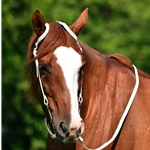 blackwhite WESTERN BRIDLE (One Ear or Two Ear Split Ear Browband) made from BETA BIOTHANE (Solid Colored)