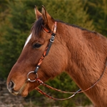 orangecamouflageoverlay WESTERN BRIDLE (One Ear or Two Ear Split Ear Browband) made with CAMOUFLAGE Beta Biothane