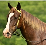 yellow WESTERN BRIDLE (One or Two Ear Split Ear Browband) made with REFLECTIVE DAY GLO Biothane