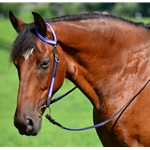 purple WESTERN BRIDLE (One or Two Ear Split Ear Browband) made with REFLECTIVE DAY GLO Biothane