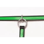 lightgreen(lime/mint)overlay SLIDING RUNNING MARTINGALE ATTACHMENT made from BETA BIOTHANE (ANY 2 COLOR COMBO)