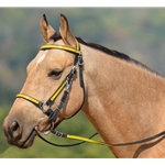 yellow overlay (bright/canary)  Traditional HALTER BRIDLE with BIT HANGERS made from BETA BIOTHANE (ANY 2 COLOR COMBO)