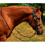 black Traditional HALTER BRIDLE with BIT HANGERS made from BETA BIOTHANE (with JEWELS RHINESTONES BLING)