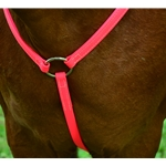 pink ENGLISH BREAST COLLAR made from BETA BIOTHANE (Solid Colored)