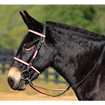 reddayglooverlay ENGLISH CONVERT-A-BRIDLE with REFLECTIVE DAY GLO Biothane