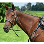 gree ENGLISH CONVERT-A-BRIDLE with CAMOUFLAGE Biothane