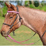 hotpink Quick Change HALTER BRIDLE with Snap on Browband made with REFLECTIVE DAY GLO Biothane