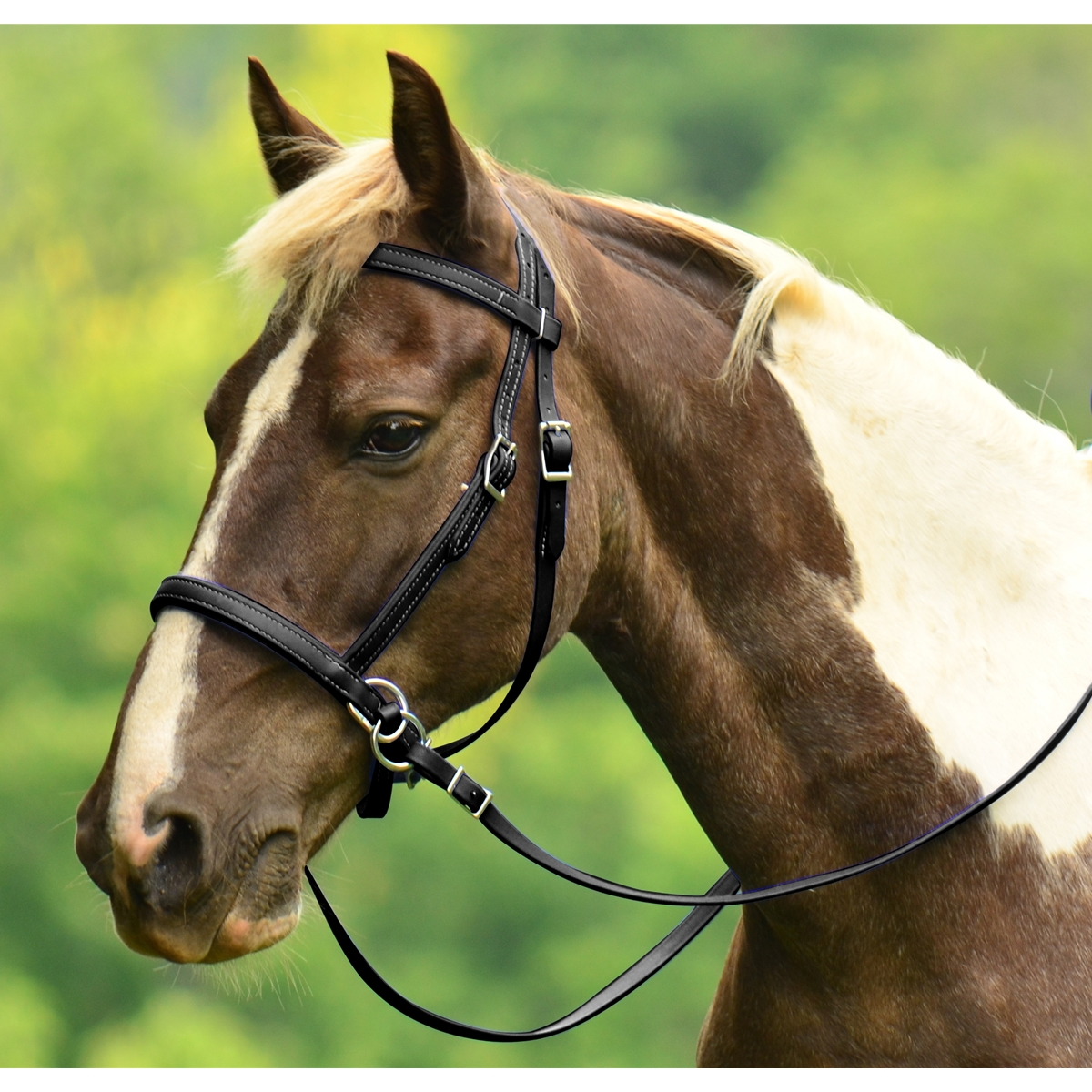 2 in 1 BITLESS BRIDLE made from LEATHER