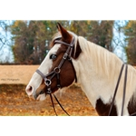 blue SIDEPULL Bitless Bridle made from BETA BIOTHANE (Solid Colored)