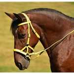 yellow SIDEPULL Bitless Bridle made from BETA BIOTHANE (Solid Colored)