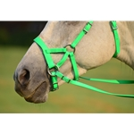 limegreen SIDEPULL Bitless Bridle made from BETA BIOTHANE (Solid Colored)