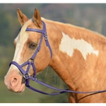 purple SIDEPULL Bitless Bridle made from BETA BIOTHANE (Solid Colored)