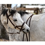 brownleather SIDEPULL Bitless Bridle made from LEATHER