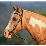 greencamo WESTERN BRIDLE (Full Browband) made with CAMOUFLAGE Beta Biothane
