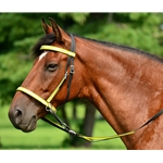 yellowoverlay 2 in 1 BITLESS BRIDLE made with REFLECTIVE DAY GLO Beta Biothane