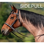 blackoverlay  2 in 1 BITLESS BRIDLE made with REFLECTIVE DAY GLO Beta Biothane