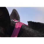 pink MEDIEVAL BAROQUE WAR or PARADE BRIDLE made from BETA BIOTHANE (Solid Colored)